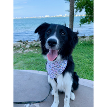 Load image into Gallery viewer, Dog wearing colorful rainbow bandana