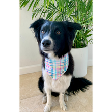 Load image into Gallery viewer, Dog wearing spring plaid dog bandana