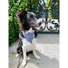 Load image into Gallery viewer, Dog wearing navy gingham check dog bandana