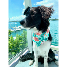 Load image into Gallery viewer, Dog wearing tropical mint and pink flamingo bandana