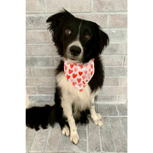 Load image into Gallery viewer, Dog wearing red and pink Valentine's Day heart dog bandana