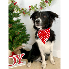 Load image into Gallery viewer, Dog wearing red and white polka dot slip on dog bandana