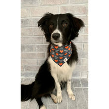 Load image into Gallery viewer, Dog wearing rescued and loved hearts navy dog bandana