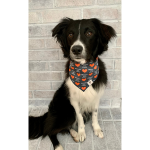 Dog wearing rescued and loved hearts navy dog bandana