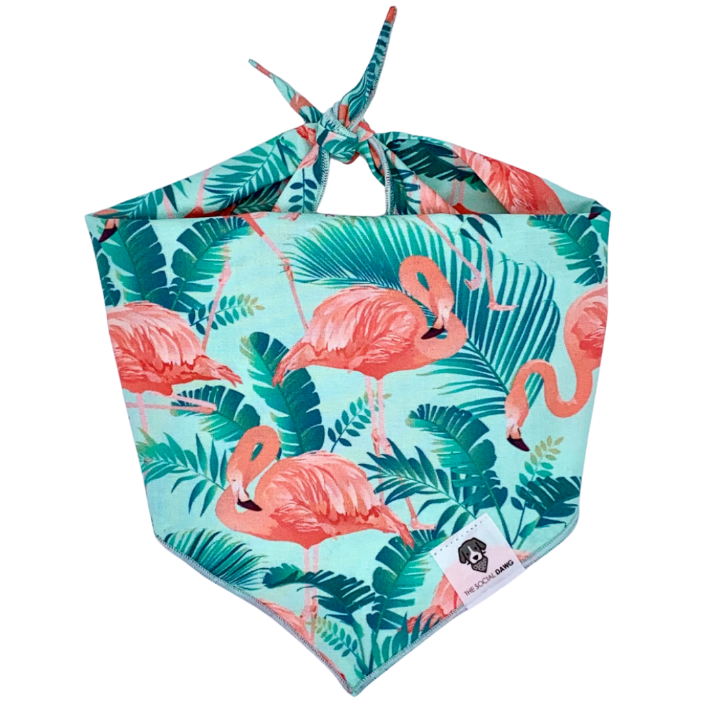 Mint and pink tropical flamingo dog bandana