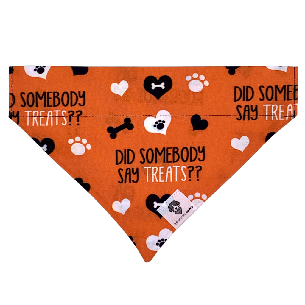 Did somebody say treats orange halloween dog bandana