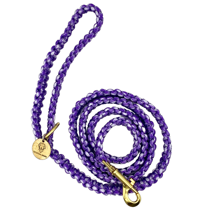 Purple and white nylon paracord rope dog leash