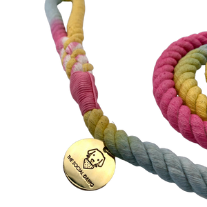 Rainbow cotton rope dog leash