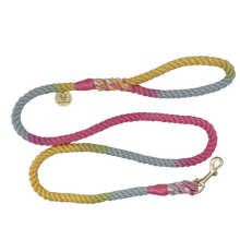 Load image into Gallery viewer, Rainbow cotton rope dog leash