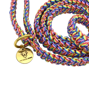 Rainbow nylon paracord rope dog leash