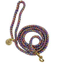 Load image into Gallery viewer, Rainbow nylon paracord rope dog leash