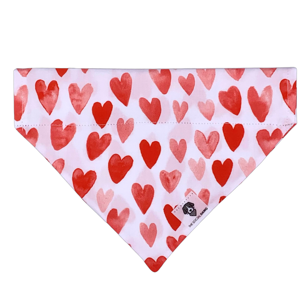 Red and pink Valentine's Day heart dog bandana