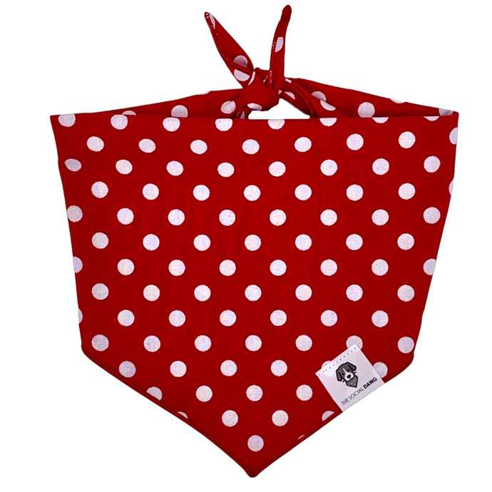 Red and white polka dot tie on bandana