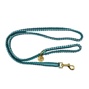 Teal and gray nylon paracord rope dog leash
