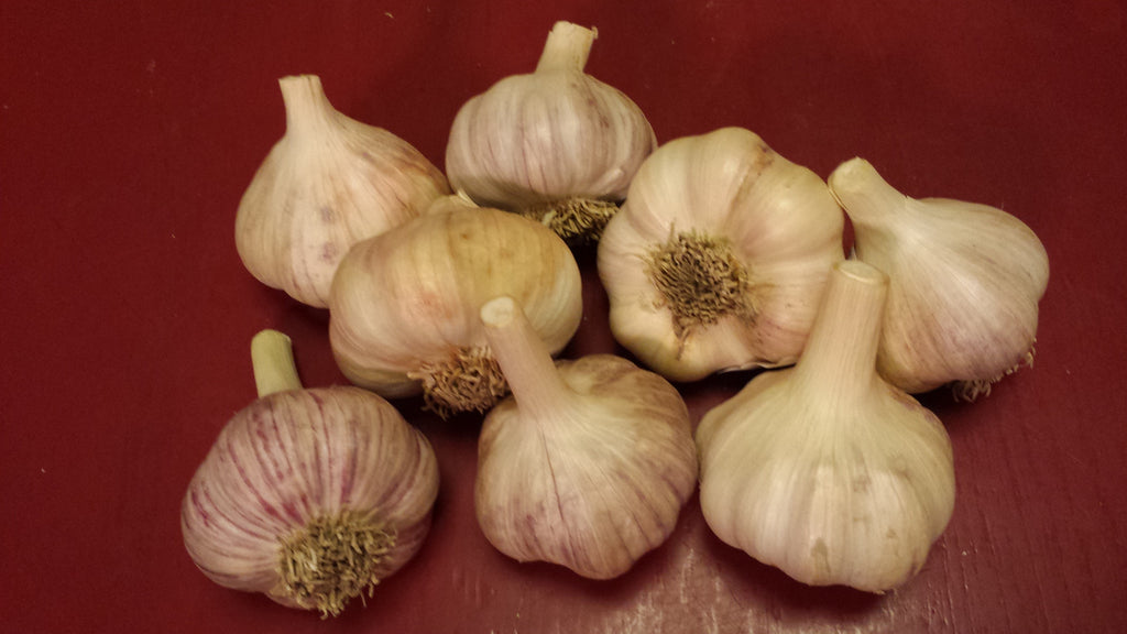 Farmer's Choice Garlic