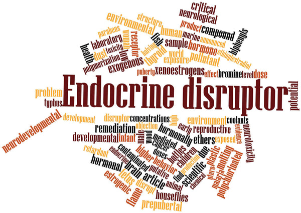 Endocrine Disruptors | What Are They and Why They Matter