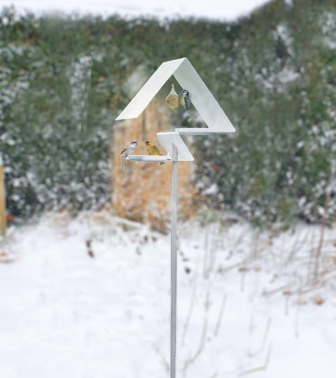 Over sneeuw, de lockdown vogels en ... design.