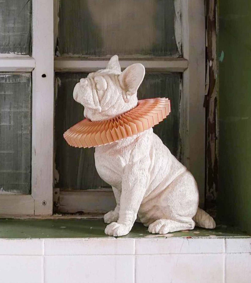 collections/Rabbit_lamp_serie.jpg