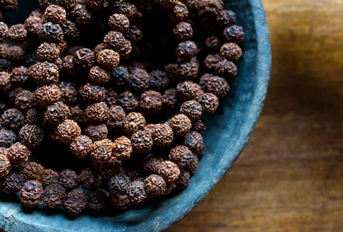 WHAT ARE RUDRAKSHA SEEDS?