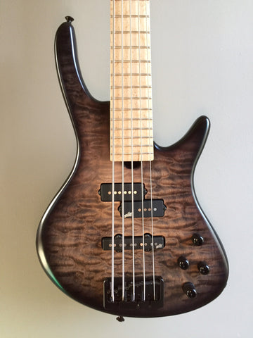 Roscoe Century Standard Plus 5-string Fretted Bass