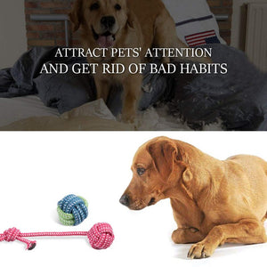 Dog Toys Online at Best Prices