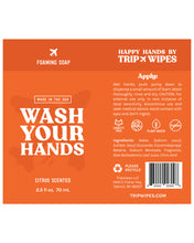 Load image into Gallery viewer, Foam Hand Soap (Set of 2)