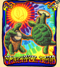 Grateful Dead Terrapin Sunshine Fleece Throw Blanket