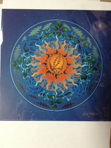 Steal Your Face Sun and Bolts Mike DuBois Art Print