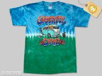 Mens Grateful Dead Bus On Tour Tie Dye T-shirt