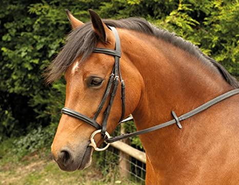 Plain Windsor Bridle Black