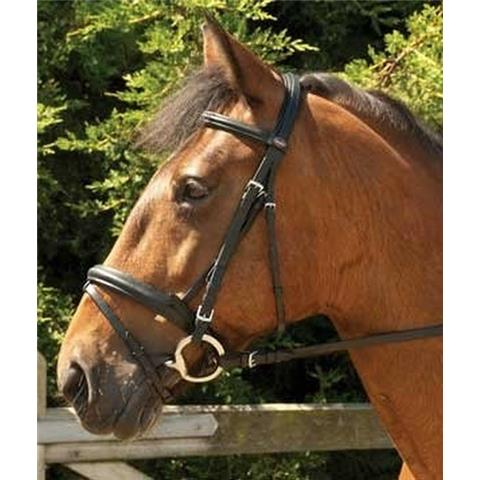 Windsor Flash Bridle Brown