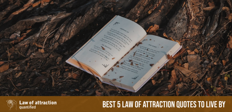 Best 5 Law of Attraction Quotes to Live By