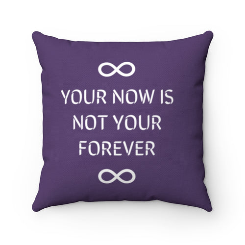 Law of Attraction Cushion Your Now Is Not Your Forever
