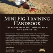 Mini Pig Training Handbook