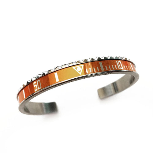 Classic Steel Bangle Orange Insert