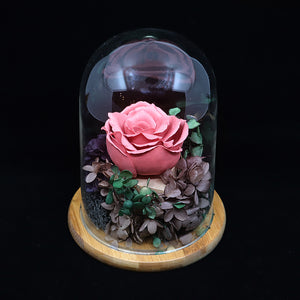 Glass Dome Ceramic Red Rose Perfume Diffuser 陶瓷紅玫瑰擴香擺設