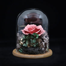Load image into Gallery viewer, Glass Dome Ceramic Red Rose Perfume Diffuser 陶瓷紅玫瑰擴香擺設