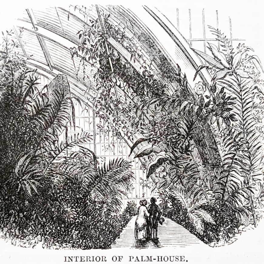 Wandering in Kew Gardens: Illustrations from a Victorian Guidebook