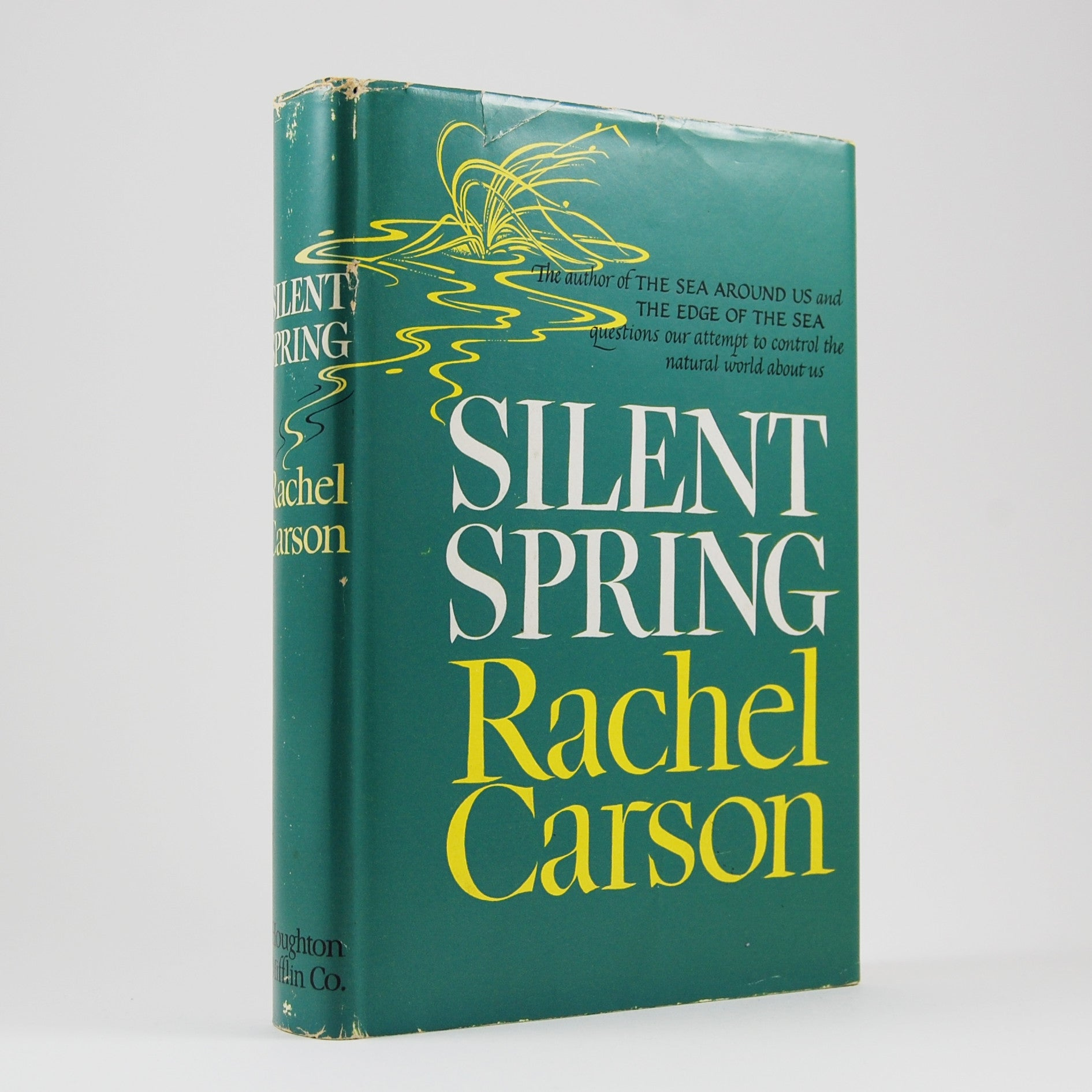 """an overview of the silent spring book by rachel carson on biology """"the major claims of miss rachel carson's book, 'silent spring,' are gross distortions of the  later biology fascinated her and she switched to."""