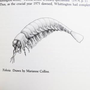 Gould, Stephen Jay. Wonderful Life | The Burgess Shale and the Nature of History