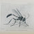 Peckham, George W. & Elizabeth G. On the Instincts and Habits of the Solitary Wasps