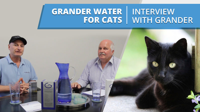 [VIDEO] Grander Water for Cats - Interview with Wayne from Grander
