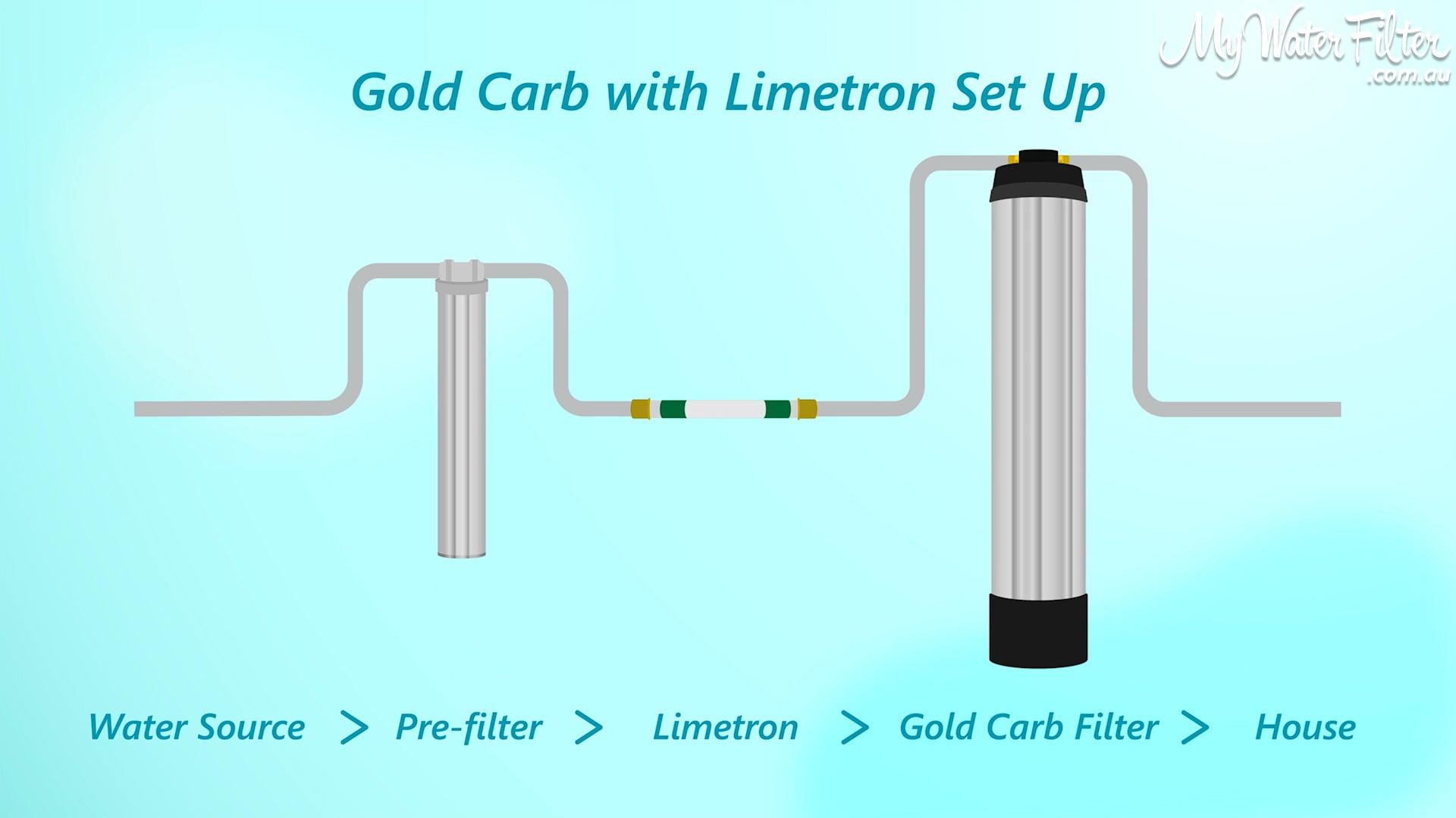 Gold Carb with Limetron Set-up