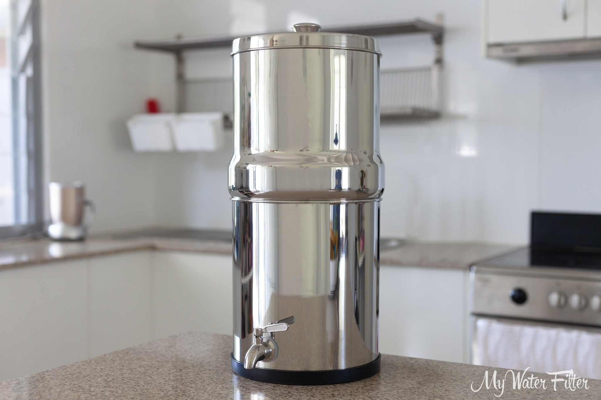 Ultrapure Stainless Steel Gravity Water Filter