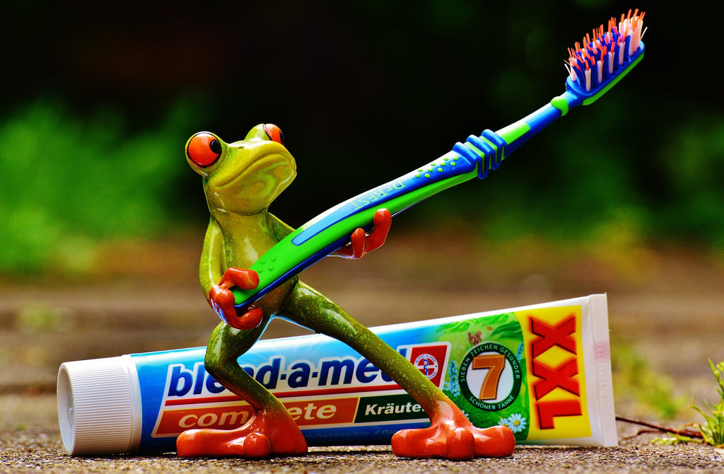 toothpaste-frog