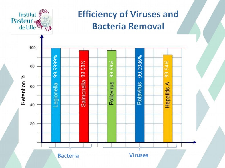 Efficiency of Viruses and Bacteria Removal