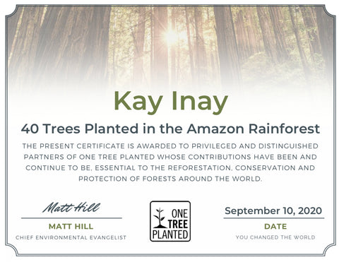 One tree planted 40 trees in the amazon rainforest