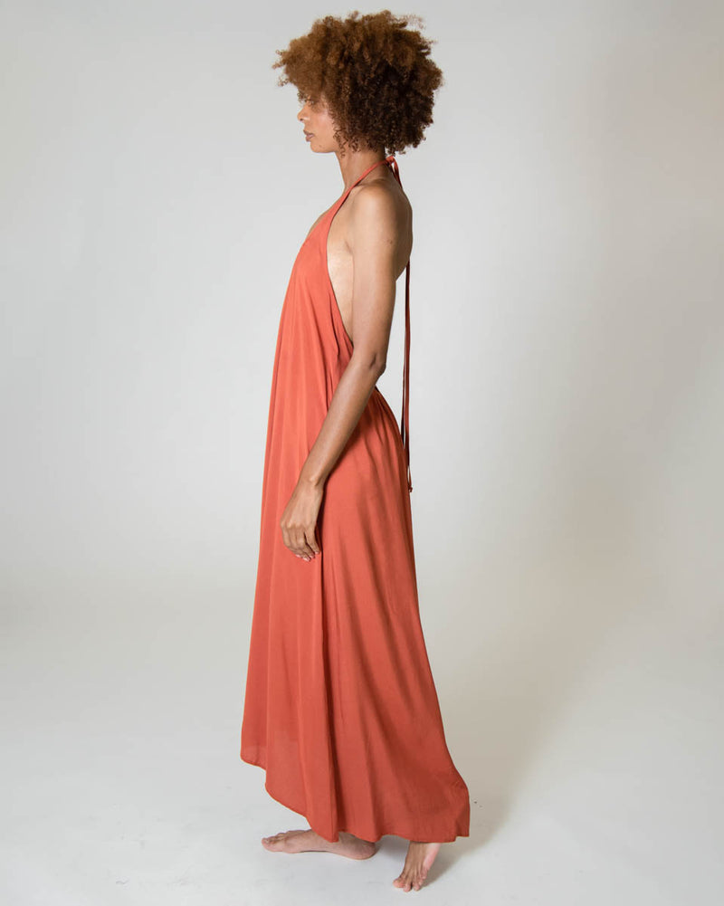 Wanderlust Dress in Riad