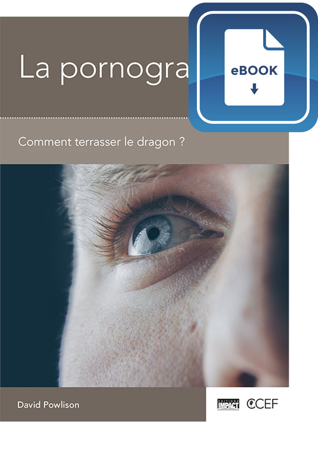 La pornographie - Comment terrasser le dragon ? (eBook)