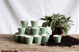 Jade Green Ceramic Pot